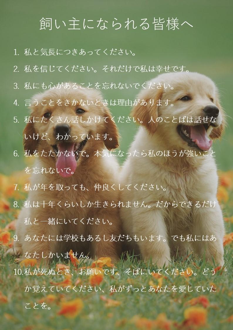 犬の十戒|ねころび